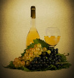 Vintage still life. With grapes and wine Royalty Free Stock Photos