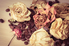 Vintage still life Royalty Free Stock Images