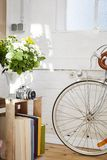 Vintage still life flowers camera bike Royalty Free Stock Image