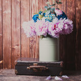 Vintage still life. Flowers in a green vintage can and retro suitcases Stock Photography