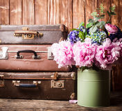 Vintage still life. Flowers in a green vintage can and retro suitcases Stock Image