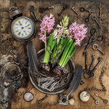 Vintage still life hyacinth flowers Old keys clock scissors Stock Images