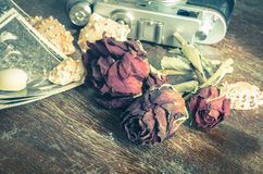 Vintage still life with old photos Royalty Free Stock Photography