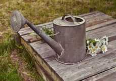Vintage still life with old watering can with flowers Stock Photo
