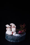 Vintage still life with sea salt in linen bags, onion on a log. Black background, copy space. Royalty Free Stock Image