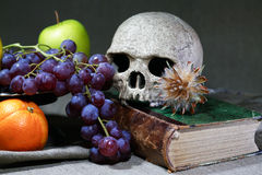 Vintage Still Life With Skull Stock Photo