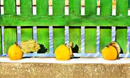 Vintage still life with yellow quince and wooden fence Royalty Free Stock Photography