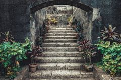 Vintage stone stairs surrounded by potted flowers. royalty free stock photo