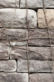 Vintage stone wall covered by vine Stock Images
