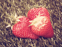 Vintage Strawberries Royalty Free Stock Image