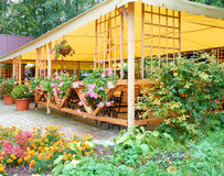 Vintage Street Cafe under Canopy. Many Colorful Flowers in hangi Royalty Free Stock Photos