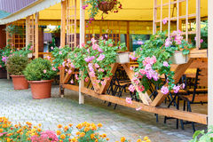 Vintage Street Cafe under Canopy. Many Colorful Flowers in hangi Stock Images
