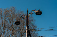 Vintage Street Lamp With Cables Royalty Free Stock Image
