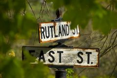 Vintage street sign. Old embossed street sign shot through green leaves royalty free stock photography