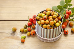 Vintage striped box of rose hip fruits on wooden table Stock Photos