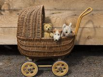 Vintage stuffed teddy bear, fox terrier dog and cat in wicker doll carriage royalty free stock image