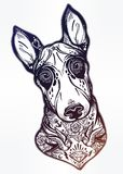 Vintage style Bull terrier in flash art tattoos. Vintage style beautiful gothic Bull terrier portrait decorated in traditional flash art tattoos. Character Royalty Free Stock Photography