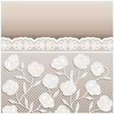 Vintage style beige wedding card with lace ornaments Stock Image