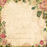 Vintage style botanical floral framed background Royalty Free Stock Photography