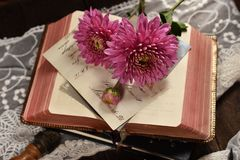 Vintage style flat lay photo with opened book and flowers royalty free stock image