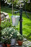 Vintage style garden landscaping in spring. With a galvanised pail hanging from an old fashioned water pump amidst colorful flowers and daisies royalty free stock image