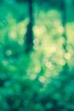 Vintage style  green  bokeh background Stock Image