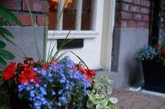 Front door with mail slot old fashioned wood door with welcome mat and beautiful flowers in pot stock photography