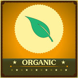 Vintage style organic poster. Vector illustration. EPS10 Royalty Free Stock Photos