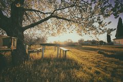 Vintage style photo of beautiful countyside royalty free stock images