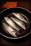Vintage style photo, fresh fish, sea bass. Ready for cooking Stock Photography