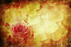 Vintage style picture of a rose petals background Royalty Free Stock Photo