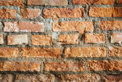 Vintage style. Red brick wall Stock Image