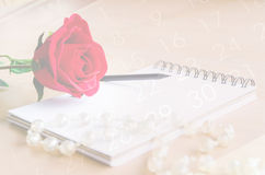 Vintage style of red rose and diary fade on calendar Royalty Free Stock Image