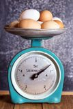 Retro scales and eggs stock images