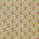 Vintage style roses floral paper texture Stock Images