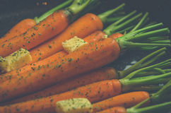 Vintage style rustic carrotts Royalty Free Stock Photography