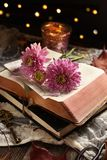 Vintage style still life with opened book and flowers royalty free stock image