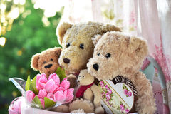 Vintage style teddy bear family Royalty Free Stock Images