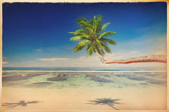 Vintage Style in a Tropical Paradise Beach Stock Photography