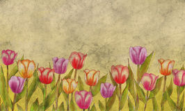 Vintage Style Tulips Blank Greeting Card vector illustration