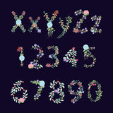 Vintage Style Vector Floral Alphabet with Uppercase and Lowercase Letters. And Numbers Stock Photos