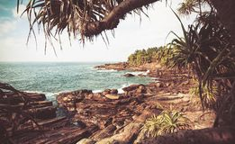 Vintage style view of ocean with cold waves, rocky bich, aloe vera and coconut trees around. Tropical landscape. At sunny weather Stock Images