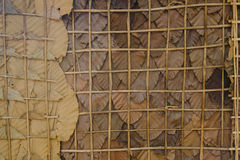 Vintage style, Wall made from leaf in rural. Dry Leaf wall background Royalty Free Stock Images