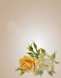 Vintage style white and yellow roses. Royalty Free Stock Photography