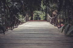 Vintage style wooden pathway in dark tropical forest with vanishing point Stock Photos
