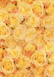 Vintage styled wedding roses Stock Photo