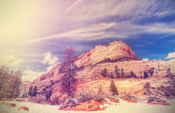 Vintage stylized mountains in Zion National Park. Stock Photos