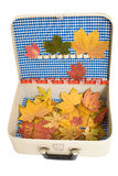 Vintage suitcase with autumn leaves stock image