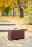 Vintage suitcase in autumn park Royalty Free Stock Photos