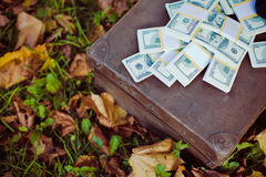 Vintage suitcase with dollars Royalty Free Stock Image